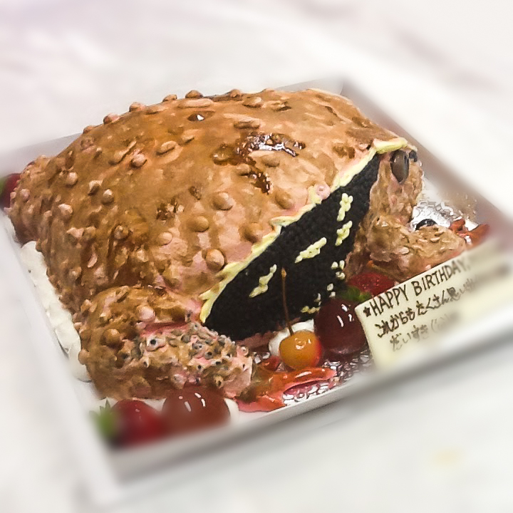 カエルの3Dケーキ-1-4