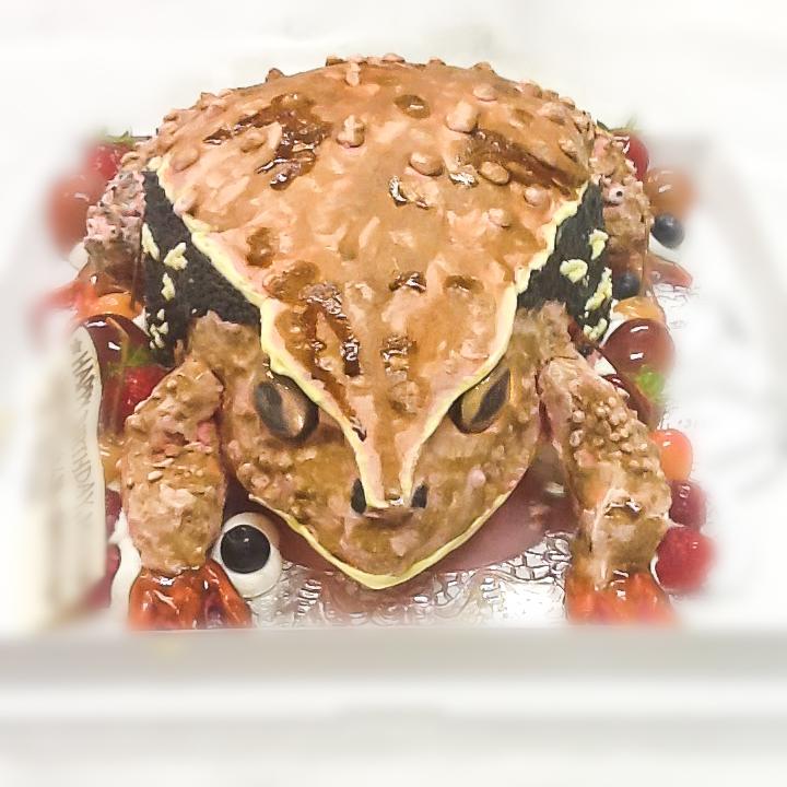 カエルの3Dケーキ-1