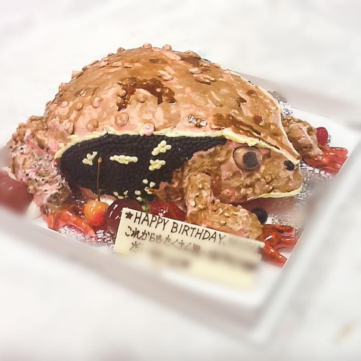 カエルの3Dケーキ-1-2