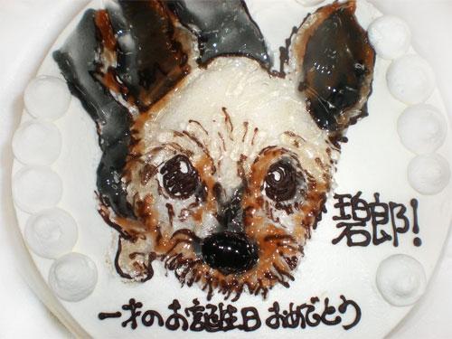 犬の似顔絵ケーキ